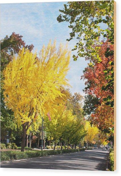 Fall On The Esplanade  Wood Print