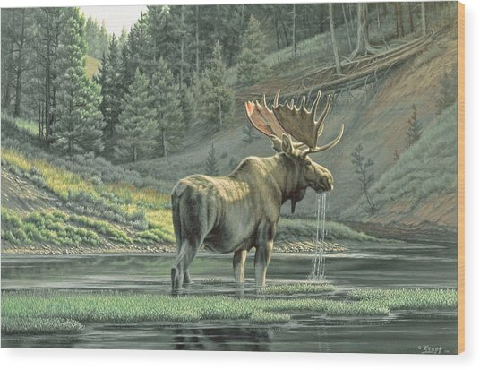 Fall On The Yellowstone Wood Print by Paul Krapf