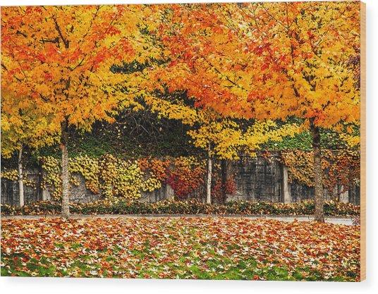 Autumnl Rainbow Wood Print