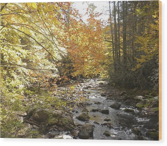 Fall Scene Damascus Va Wood Print