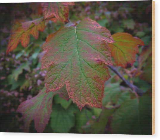 Fall Sparkle Wood Print