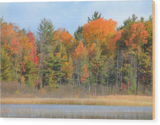 Fall Splender Wood Print by Rhonda Humphreys