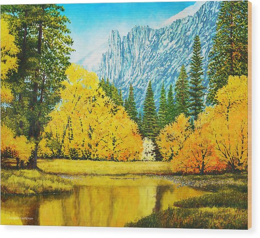 Fall Splendor In Yosemite Wood Print