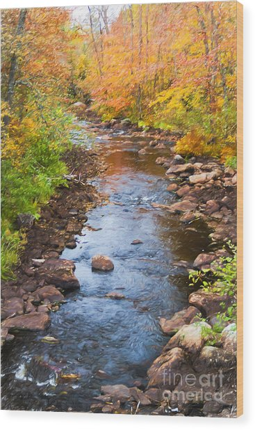 Fall Stream Wood Print
