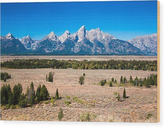 Fall Tetons   Wood Print