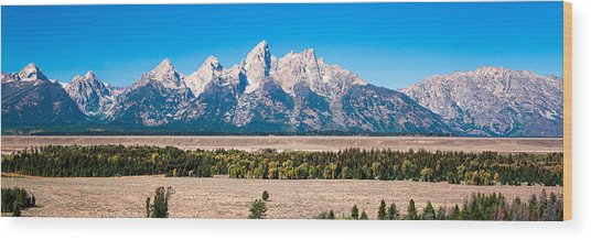 Fall Tetons Panorama   Wood Print