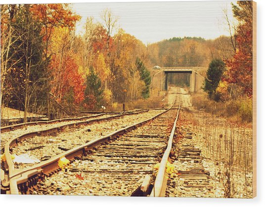 Fall Tracks Wood Print by Stephanie Grooms