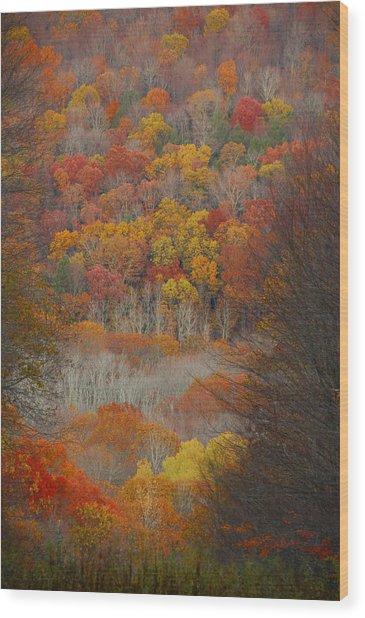 Fall Tunnel Wood Print
