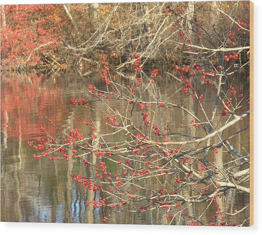 Fall Upon The Water Wood Print