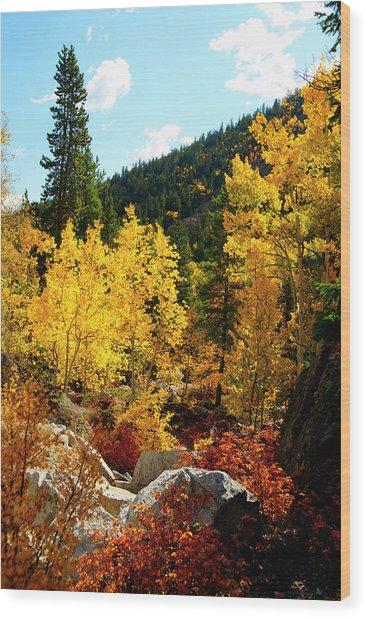 Fall2 Wood Print