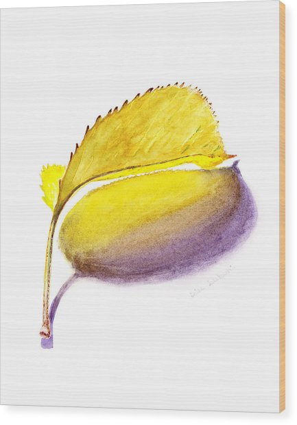 Fallen Leaf Yellow Shadows Wood Print
