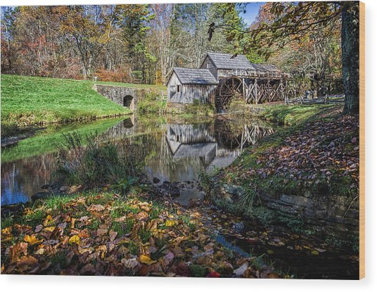 Fallen Leaves At Mabry Mill Wood Print
