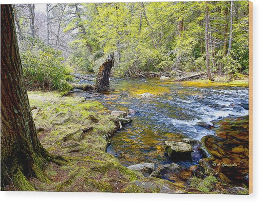 Fallen Tree In Stream Pocono Mountains Wood Print