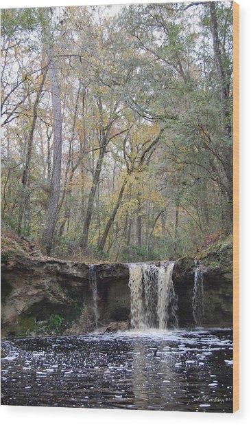 Falling Creek Falls - Columbia County Park Wood Print