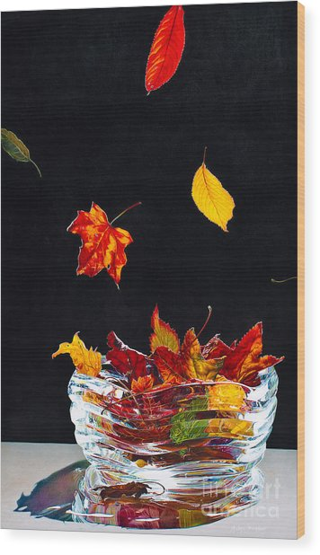 Falling Into Place Wood Print by Arlene Steinberg