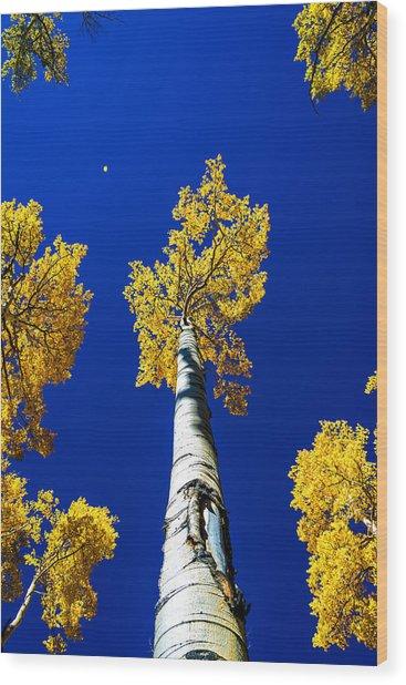 Falling Leaf Wood Print