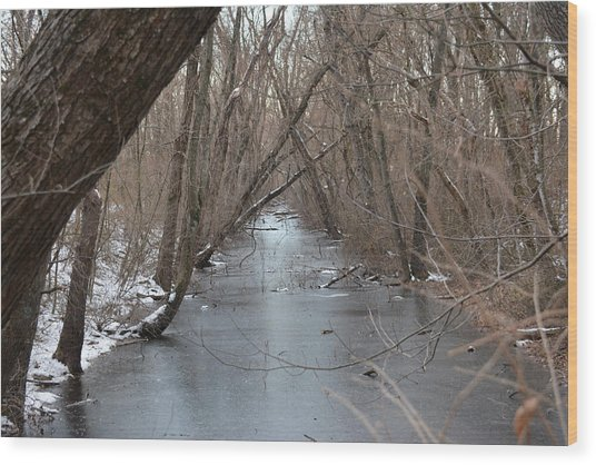 Falling Trees On A Frozen Canal Wood Print by Bill Helman