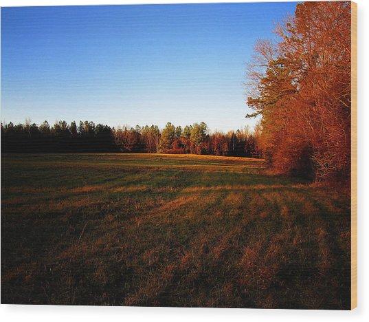Fallow Field Wood Print