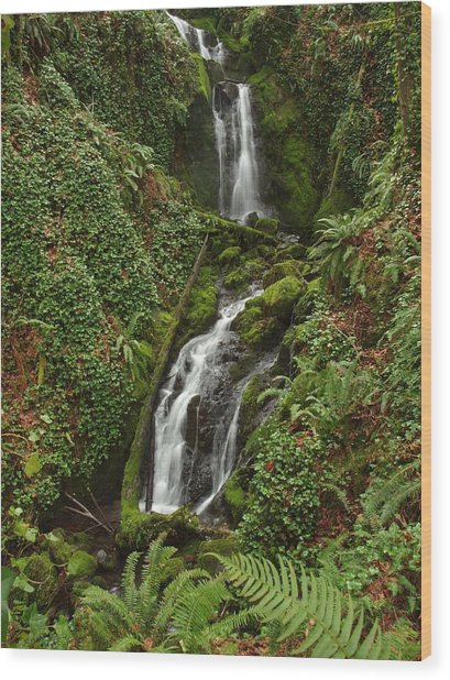 Falls At Rainer II Wood Print