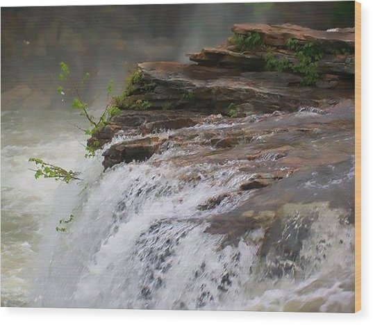 Falls Of Alabama Wood Print