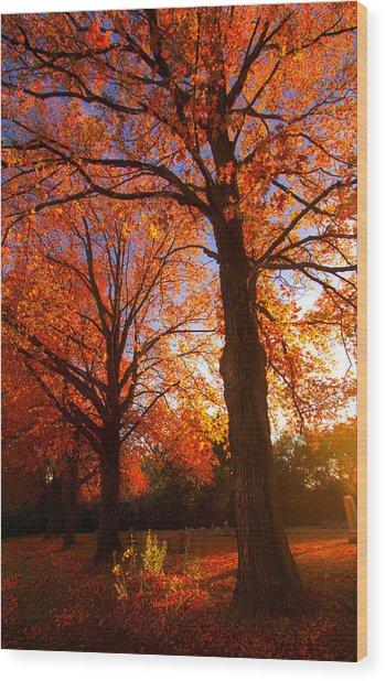 Fall's Splendor Wood Print