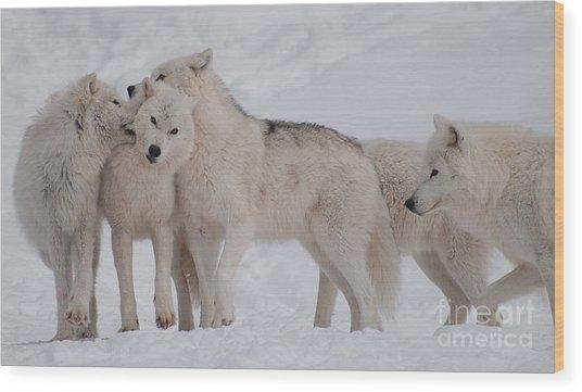 Family Ties Wood Print