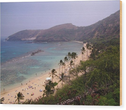 Famous Beach In Hawaii Wood Print