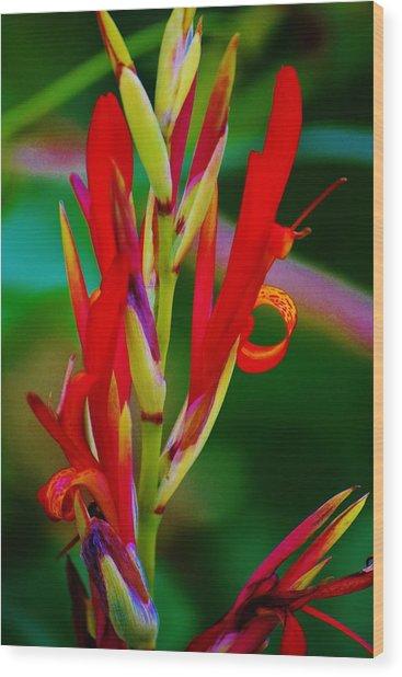 Fancy Bloom Wood Print