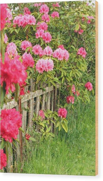 Fancy Fence Wood Print