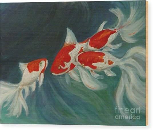 Fantail Koi Wood Print by Nancy Bradley