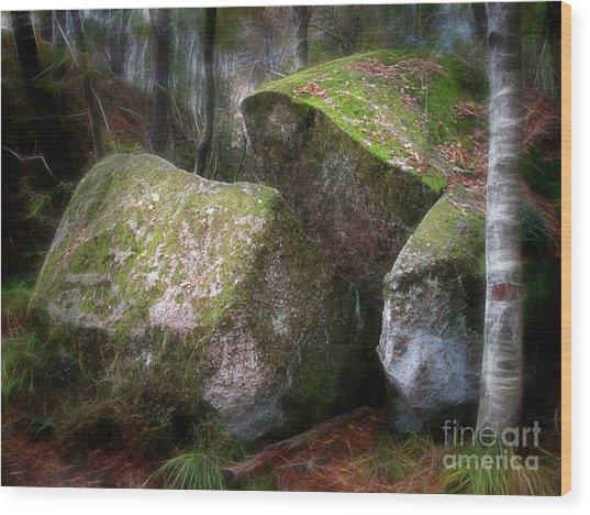 Fantasy Woods Wood Print by Lutz Baar