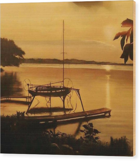 Farleys Point Union Springs Ny Wood Print by Pamela Powers