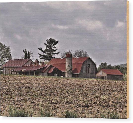 Farm 2 Wood Print