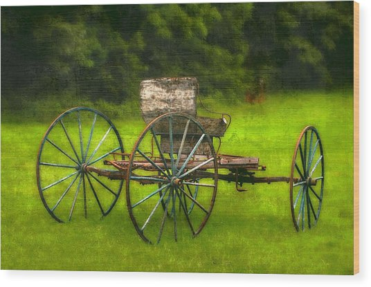 Farm Buggy Wood Print by Dave Hrusecky