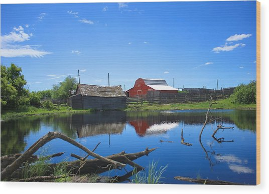 Farm Buildings And Pond. Wood Print
