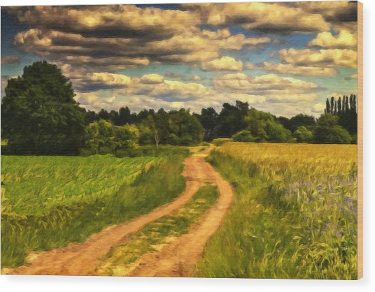 Farm Country Germany Ger3700 Wood Print