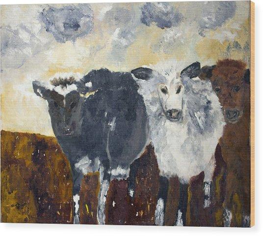 Farm Cows Wood Print
