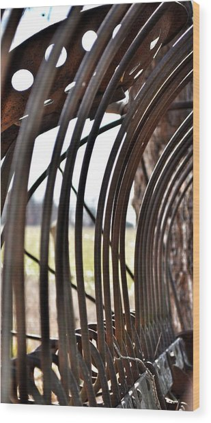 Farm Equipment Wood Print by Branden Simons