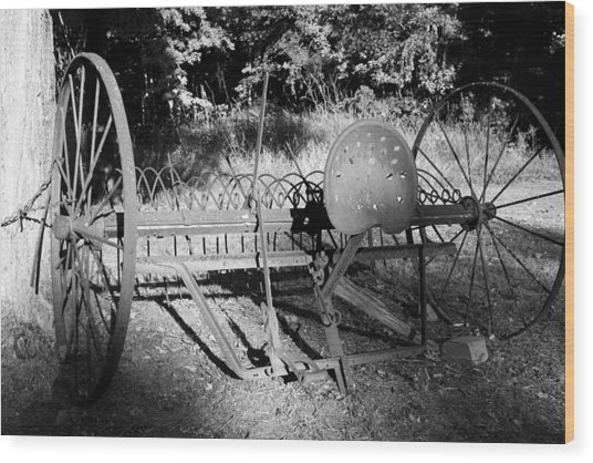 Farm Equipment Bw Wood Print by Mary Bedy