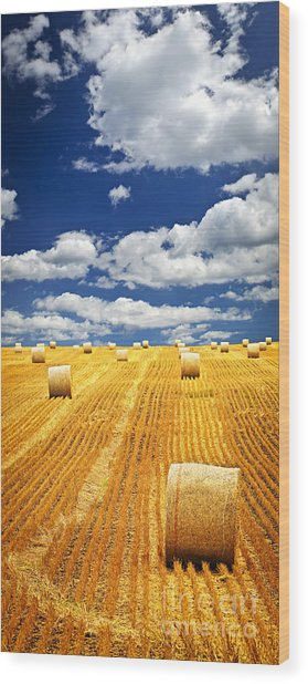 Farm Field With Hay Bales In Saskatchewan Wood Print