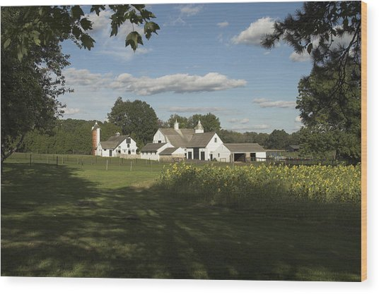 Farm House In Pa Wood Print