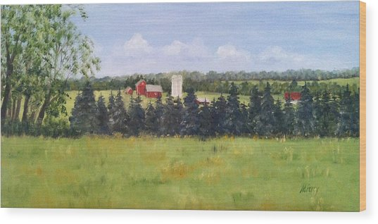 Farm In Rushland Wood Print