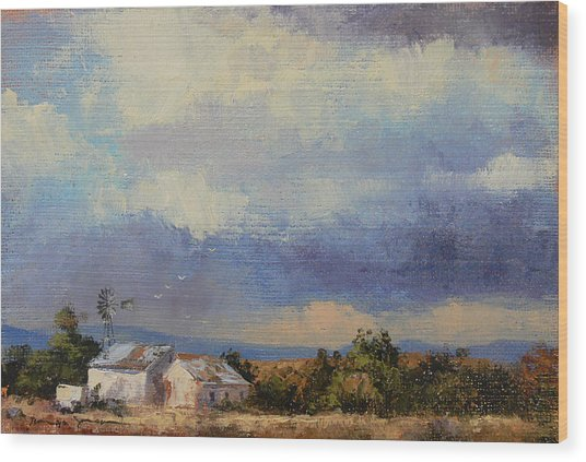 Farm In The Karoo Wood Print
