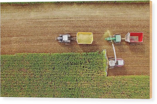 Farm Machines Harvesting Corn In September, Viewed From Above Wood Print by JamesBrey