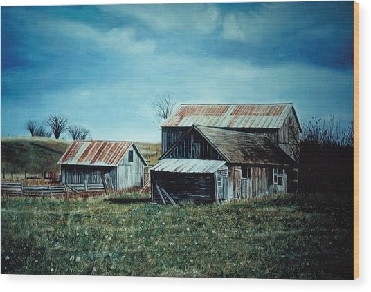 Farm Near Fenton Michigan Wood Print