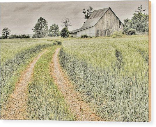 Farm On Diamondview Road Wood Print