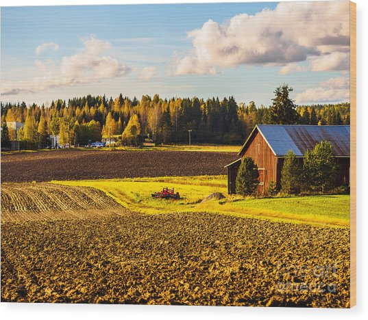 Farmer's Sunny Autumn Day Wood Print