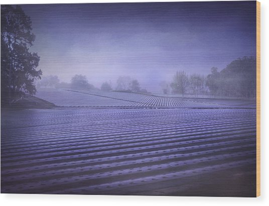 Farmland 2 Wood Print
