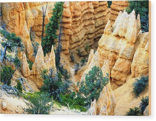 Faryland Canyon Bryce Canyon National Monument Wood Print