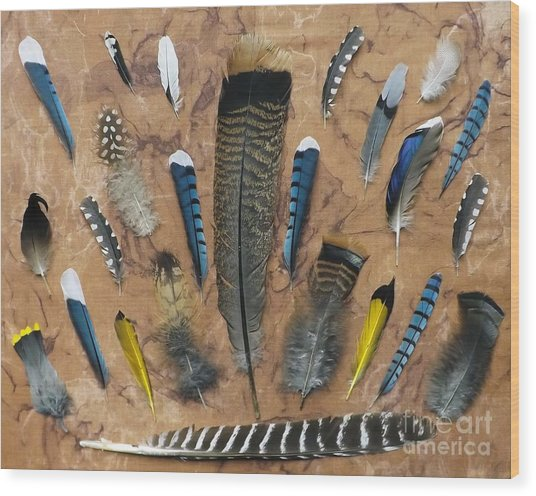 Feather Friends Wood Print